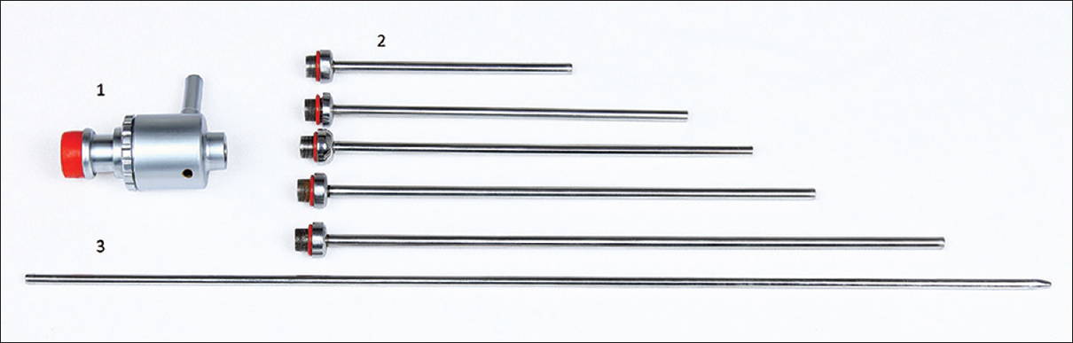 Figure 1: Shah Sheath with different length cannulas