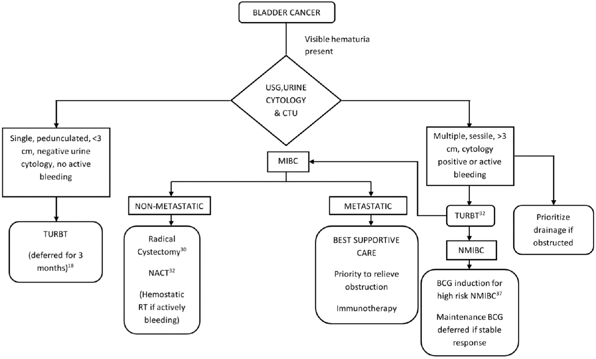 Figure 2: Algorithm for management of bladder cancer in the COVID-19 pandemic. USG = Ultrasonogram, CTU = Computed tomography with urogram, NACT = Neoadjuvant chemotherapy, G-CSF = Granulocyte colony stimulating factor, RT = Radiotherapy